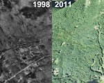 Camden Snow Bowl Aerial Imagery, 1998 vs. 2011
