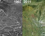 Sugarloaf Aerial Imagery, 1997 vs. 2011