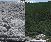 Beartown Mountain Aerial Imagery, 1971 vs. 2003
