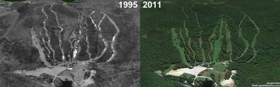 Butternut Aerial Imagery, 1995 vs. 2011