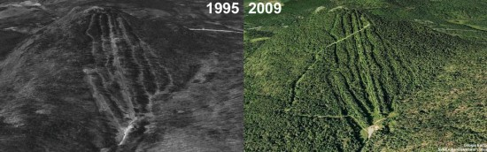 Mt. Watatic Aerial Imagery, 1995 vs. 2009