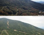 Baron's Run from Bald Mountain, September 2013 vs. September 2014