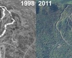 Ragged Mountain Aerial Imagery, 1998 vs. 2011