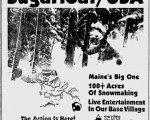 November 19, 1981 Bangor Daily News